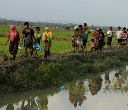 Déplacement Rohingyas Birmanie Bengladesh