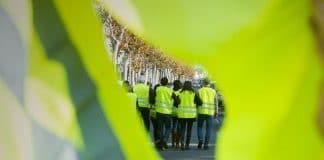 mouvement des gilets jaunes